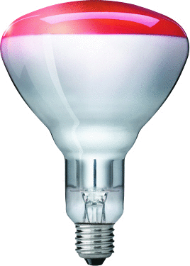 Philips BR125 Infrarotlampe 150 W E27 230-250 V Red 1CT/10